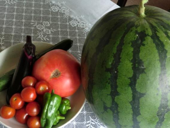 すいかと夏野菜